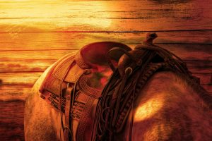 A saddle and a horse - a lot of places for family fun in NJ include them!